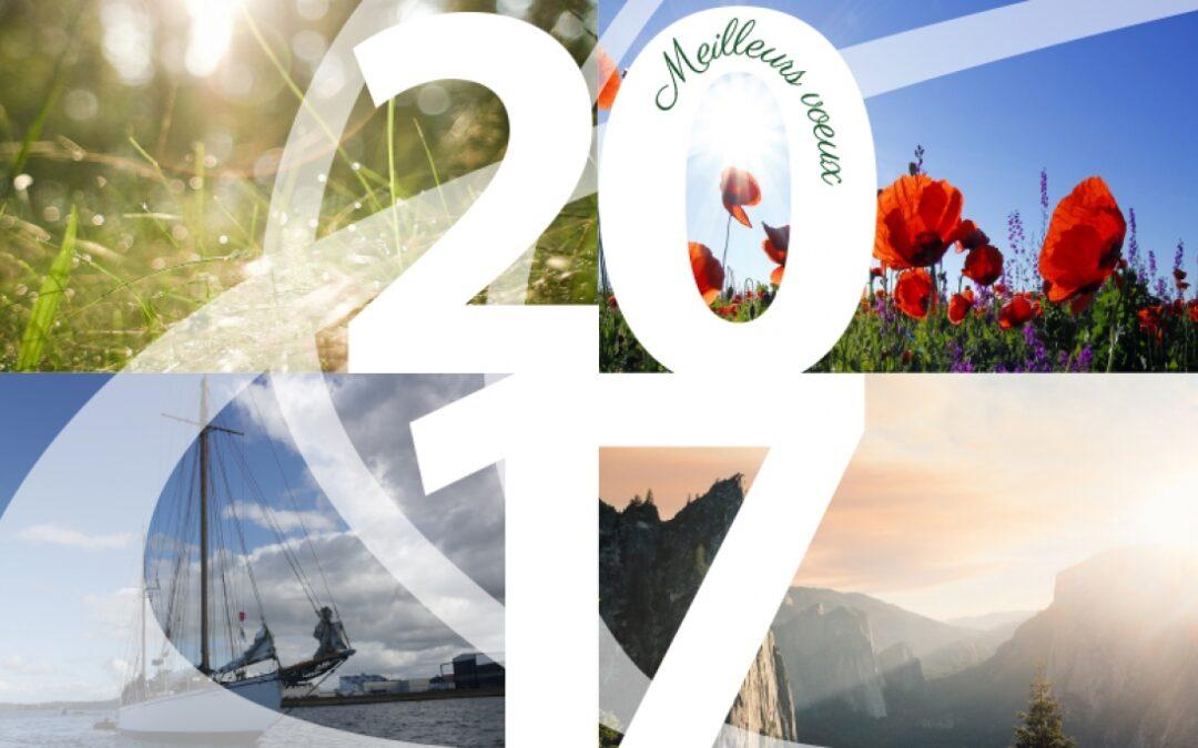 Goodwill-management vous souhaite une belle année 2017 !
