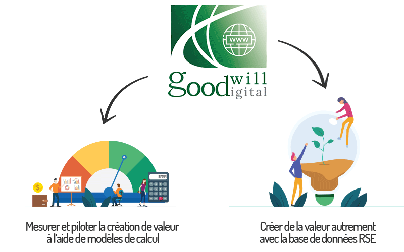 Schéma Goodwill Digital - Goodwill Management