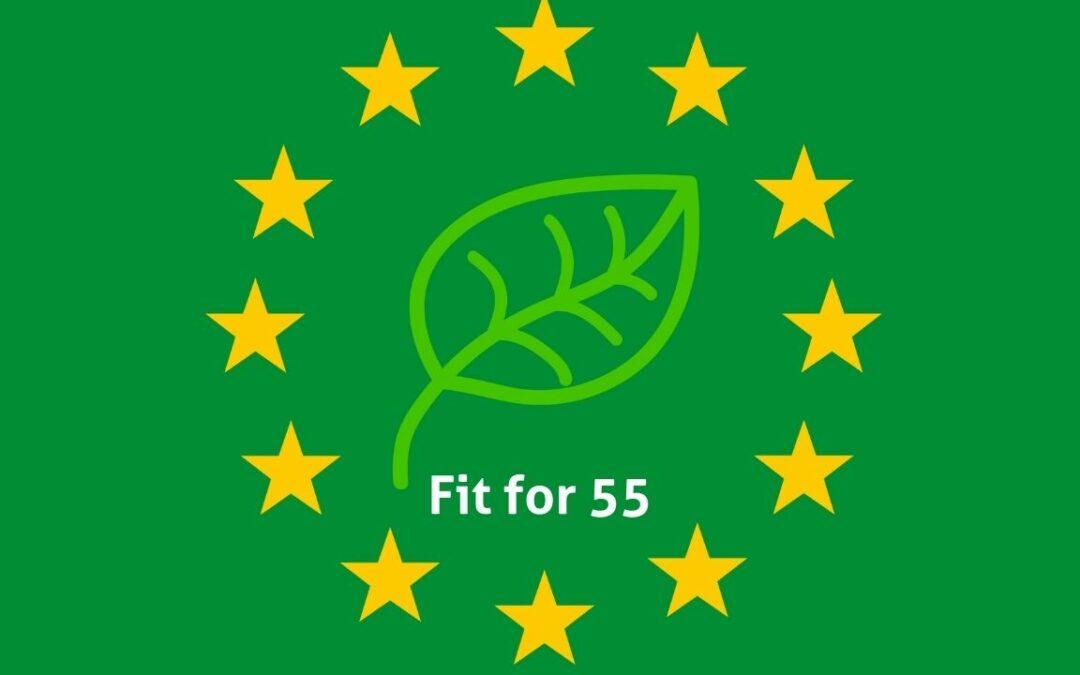 Photo étoiles europe et feuille verte - Fit for 55 - Goodwill Management